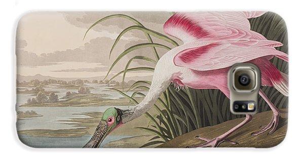 Roseate Spoonbill Galaxy S6 Case by John James Audubon