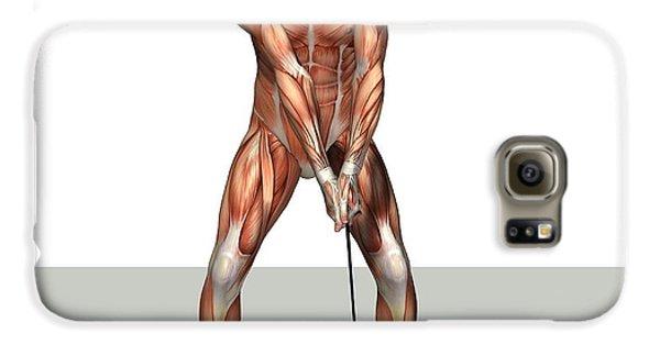 Male Muscles, Artwork Galaxy S6 Case by Friedrich Saurer