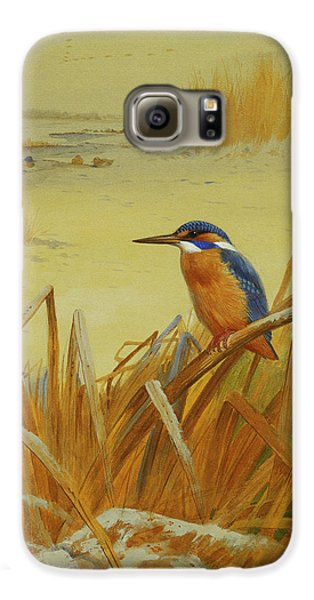 A Kingfisher Amongst Reeds In Winter Galaxy S6 Case by Archibald Thorburn