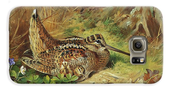 A Woodcock And Chicks Galaxy S6 Case by Archibald Thorburn