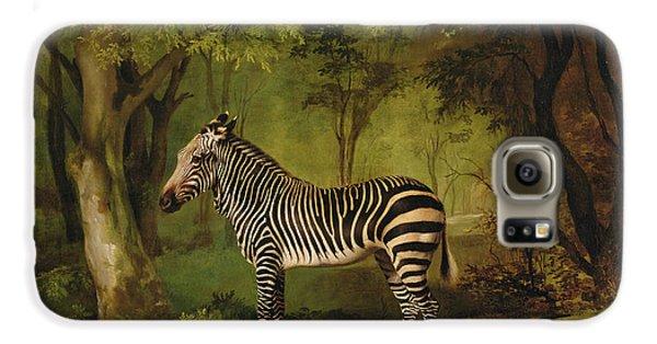 A Zebra Galaxy S6 Case by George Stubbs