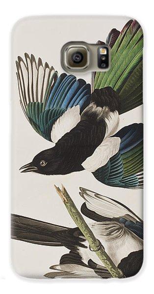 American Magpie Galaxy S6 Case by John James Audubon