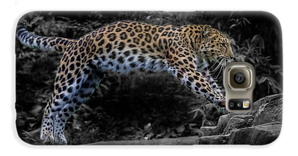 Amur Leopard On The Hunt Galaxy S6 Case by Martin Newman