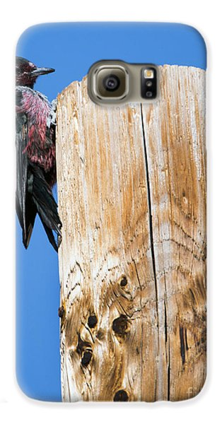 Any Tree Will Do Galaxy S6 Case by Mike Dawson