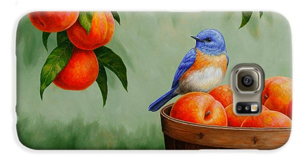 Bluebird And Peaches Greeting Card 3 Galaxy S6 Case by Crista Forest