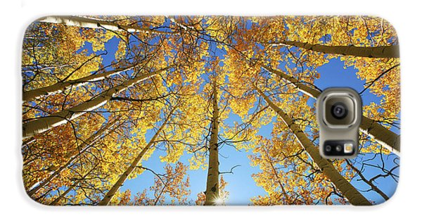 Aspen Tree Canopy 2 Galaxy S6 Case by Ron Dahlquist - Printscapes