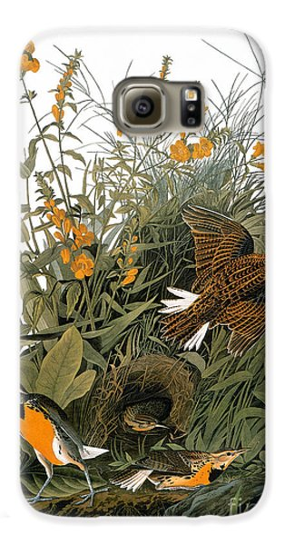 Audubon: Meadowlark Galaxy S6 Case by Granger