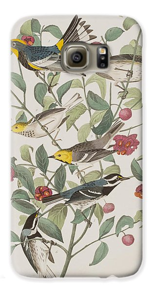 Audubons Warbler Hermit Warbler Black-throated Gray Warbler Galaxy S6 Case by John James Audubon