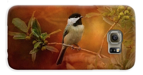 Autumn Day Chickadee Bird Art Galaxy S6 Case by Jai Johnson