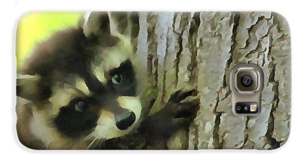 Baby Raccoon In A Tree Galaxy S6 Case by Dan Sproul