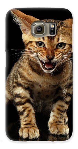 Bengal Kitty Stands And Hissing On Black Galaxy S6 Case by Sergey Taran