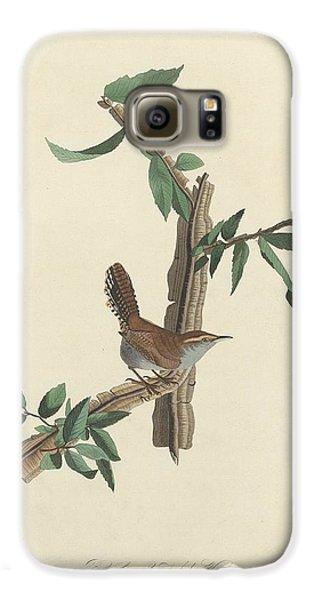 Bewick's Long-tailed Wren Galaxy S6 Case by John James Audubon