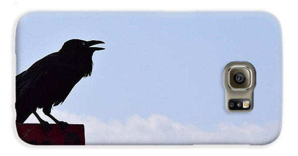 Crow Profile Galaxy S6 Case by Sandy Taylor