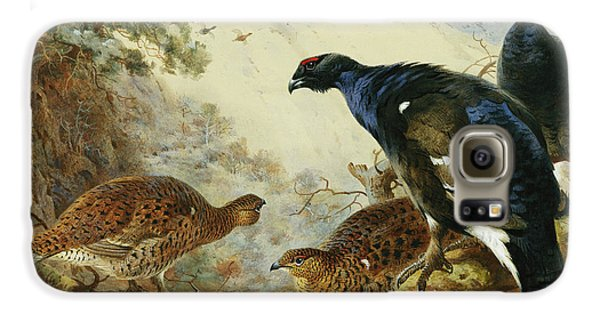 Blackgame Or Black Grouse Galaxy S6 Case by Archibald Thorburn