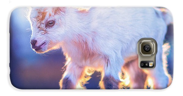 Little Baby Goat Sunset Galaxy S6 Case by TC Morgan