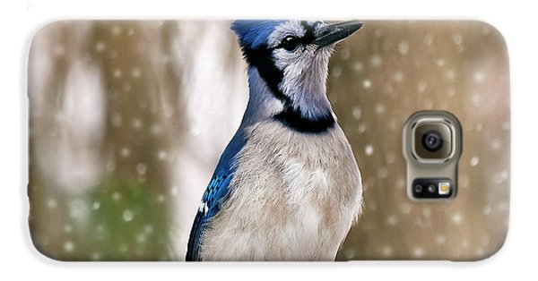 Blue For You Galaxy S6 Case by Evelina Kremsdorf