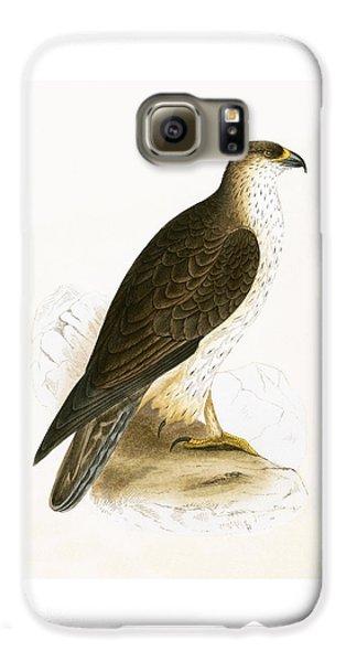 Bonelli's Eagle Galaxy S6 Case by English School