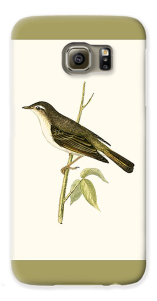 Bonelli's Warbler Galaxy S6 Case by English School