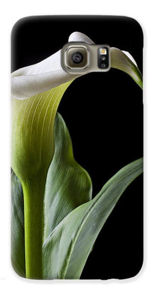 Calla Lily With Drip Galaxy S6 Case by Garry Gay