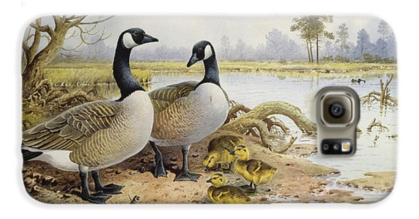 Canada Geese Galaxy S6 Case by Carl Donner
