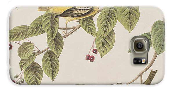 Carbonated Warbler Galaxy S6 Case by John James Audubon