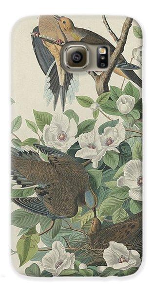 Carolina Pigeon Or Turtle Dove Galaxy S6 Case by John James Audubon