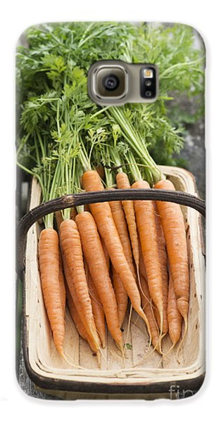 Carrots Galaxy S6 Case by Tim Gainey