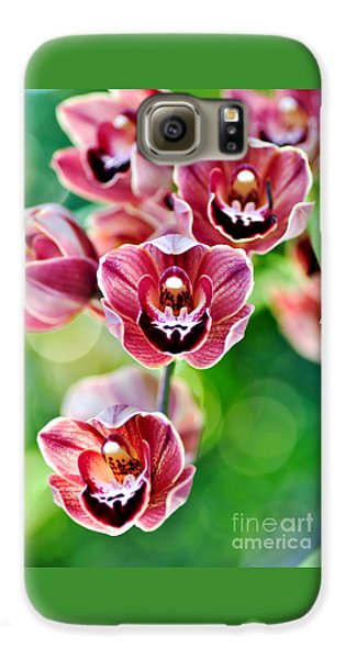 Cascading Miniature Orchids Galaxy S6 Case by Kaye Menner