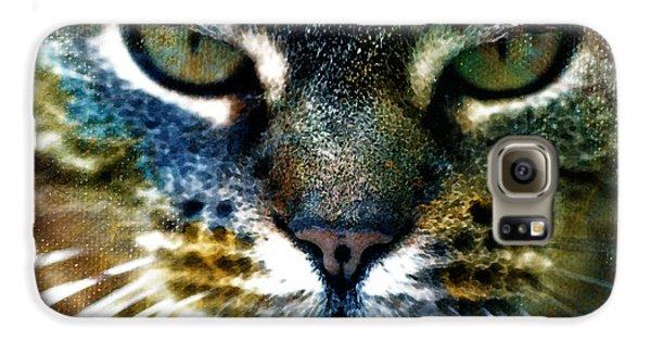 Cat Art Samsung Galaxy Case by Frank Tschakert