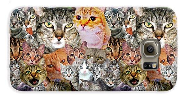 Cats Galaxy S6 Case by Gloria Sanchez