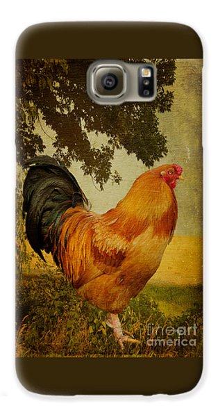 Chanticleer Galaxy S6 Case by Lois Bryan
