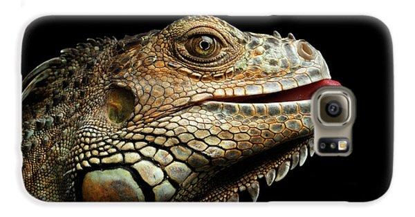 Close-upgreen Iguana Isolated On Black Background Galaxy S6 Case by Sergey Taran