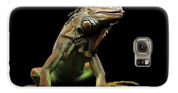 Closeup Green Iguana Isolated On Black Background Galaxy S6 Case by Sergey Taran