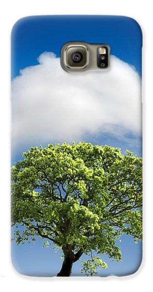 Cloud Cover Galaxy S6 Case by Mal Bray