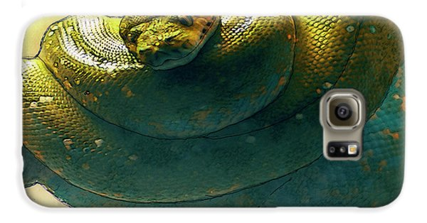 Coiled Galaxy S6 Case by Jack Zulli