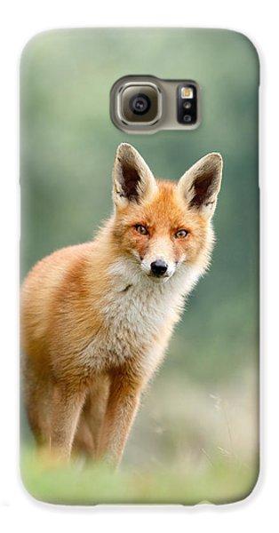Curious Fox Galaxy S6 Case by Roeselien Raimond
