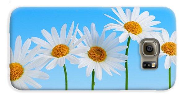 Daisy Flowers On Blue Galaxy S6 Case by Elena Elisseeva
