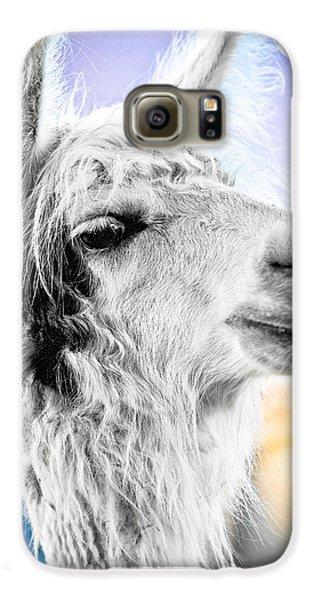 Dirtbag Llama Galaxy S6 Case by TC Morgan