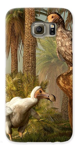 Dodo Hide N Seek Samsung Galaxy Case by Daniel Eskridge