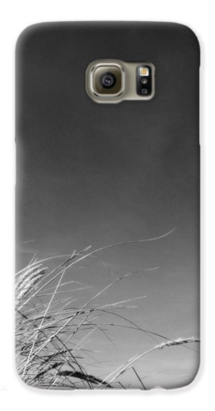 Dune Grass With Sky Galaxy Case by Michelle Calkins
