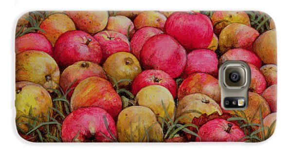 Durnitzhofer Apples Galaxy S6 Case by Ditz