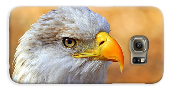 Eagle 7 Galaxy S6 Case by Marty Koch