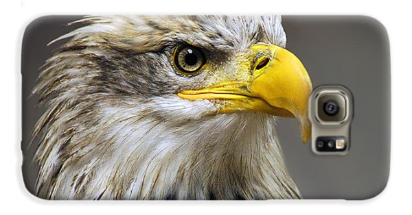 Eagle Galaxy S6 Case by Harry Spitz