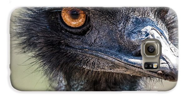 Emu Eyes Galaxy S6 Case by Paul Freidlund