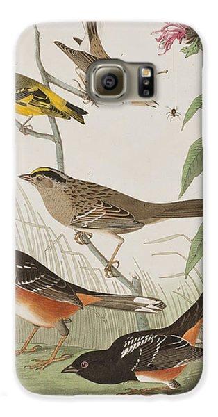 Finches Galaxy S6 Case by John James Audubon