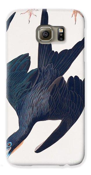 Frigate Penguin Galaxy S6 Case by John James Audubon