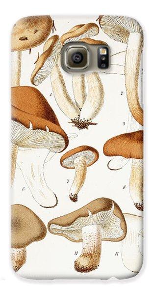 Fungi Galaxy S6 Case by Jean-Baptiste Barla