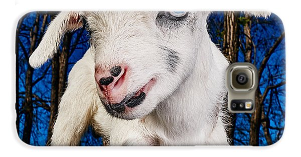Goat High Fashion Runway Galaxy S6 Case by TC Morgan