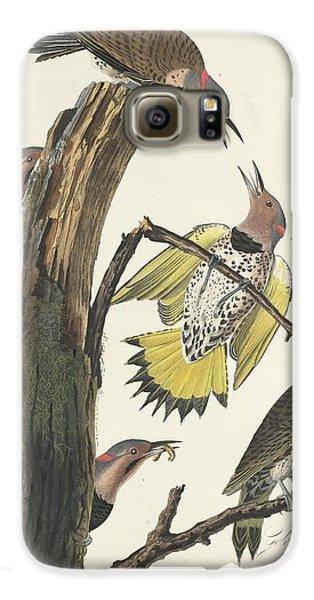 Gold-winged Woodpecker Galaxy S6 Case by John James Audubon