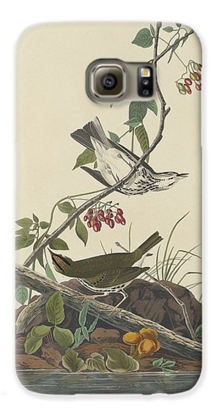 Golden-crowned Thrush Galaxy S6 Case by John James Audubon